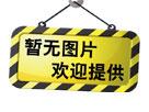 """""""志存高远 脚踏实地""""――南西象创始人刘亚琴女士"""